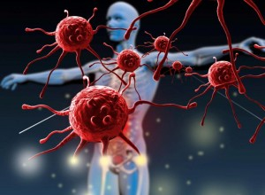 Immune System and The Gut