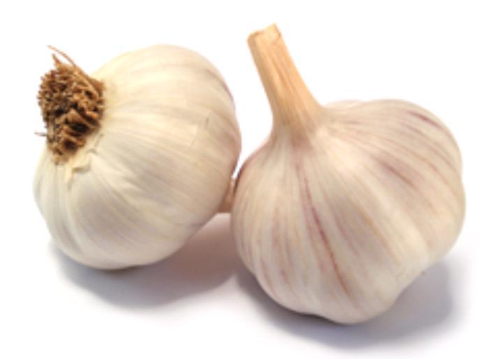 Causes of Bad Breath Garlic